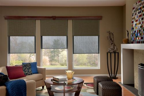 lounge room blinds
